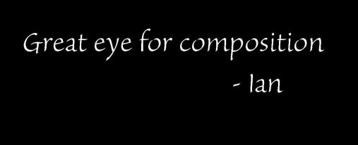 Ianp Quote
