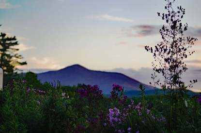 Purple Haze - Saint Gaudens National Historic Site - Mount Ascutney